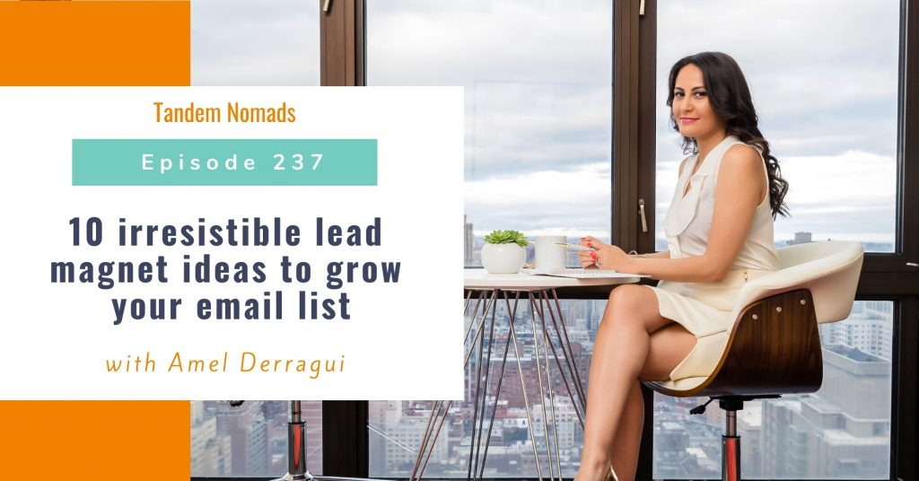 10 irresistible lead magnet ideas to grow your email list